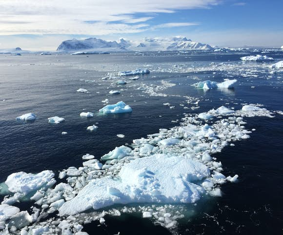 The Errera Channel, Antarctica