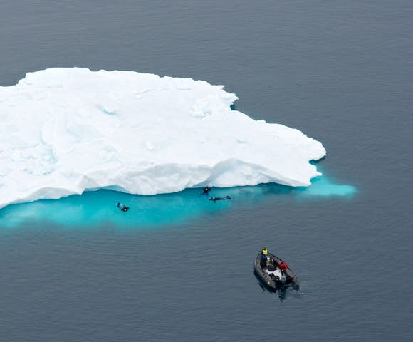 Scuba diving in Antarctica