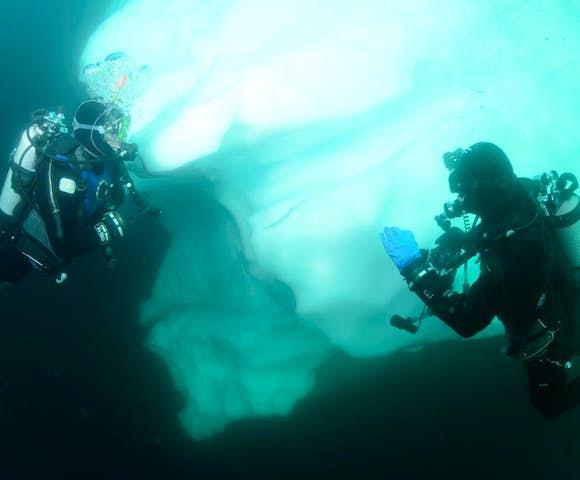 Scuba diving in Antarctica