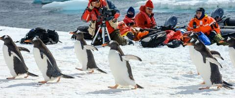 Luxury Antarctic Cruises