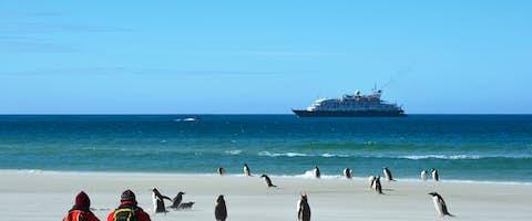 South Georgia Cruises