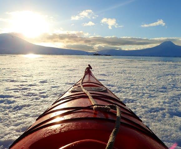 QUI_2_QUI_RTD_OCEAN_TRAMP-kayak