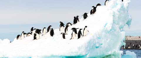 Fly & Cruise the Antarctic Peninsula