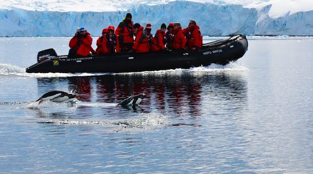 Highlights of the Antarctic Peninsula