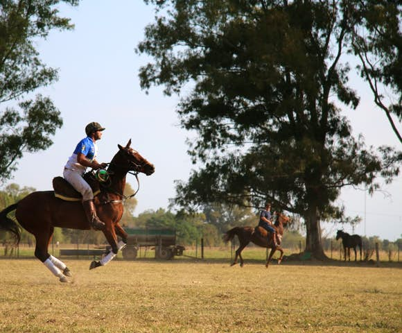A man plays polo on horseback in Buenos Aires, Argentina