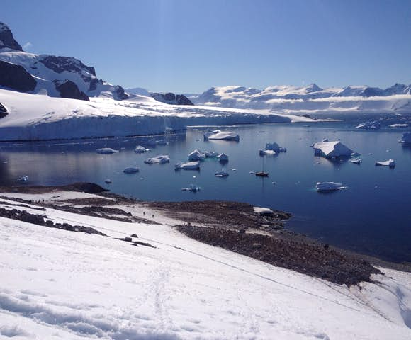 Cuverville Island